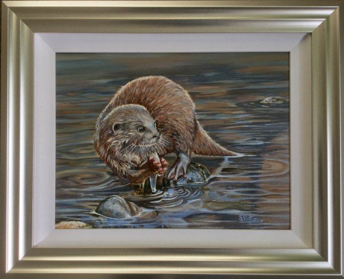 Otter, standing in a stream, eating
