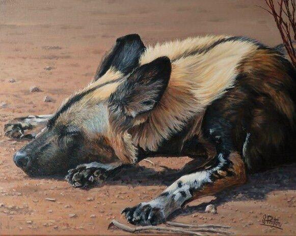 African Wild Dog - SOLD
