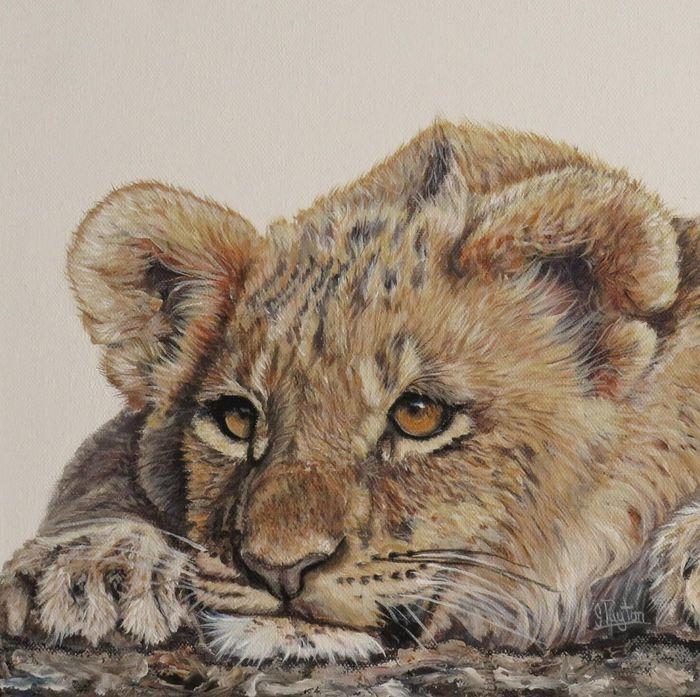 Lion About