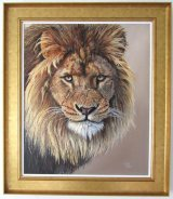Lion's Stare -  SOLD