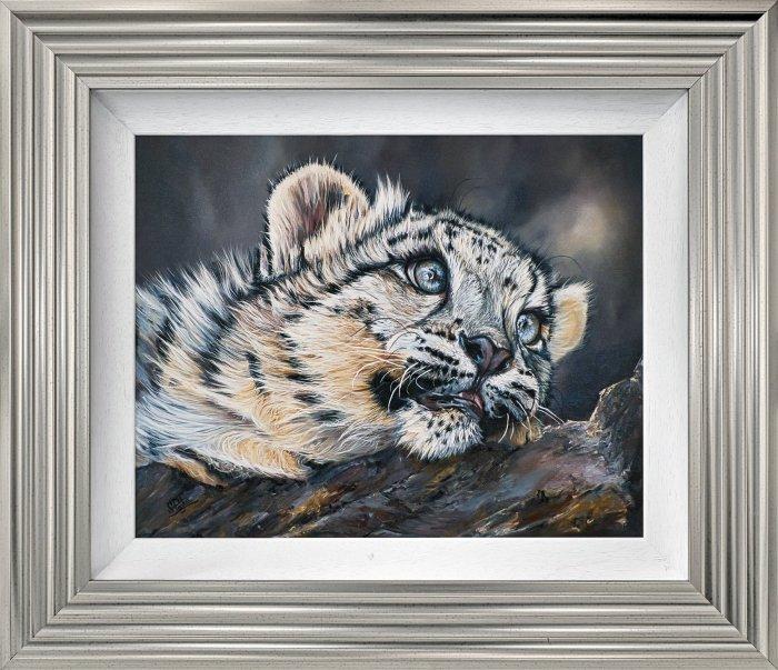 Sleepy snow leopard cub