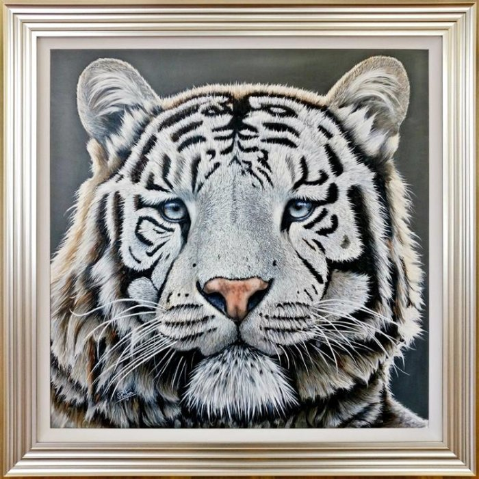 White tiger with blue eyes portrait