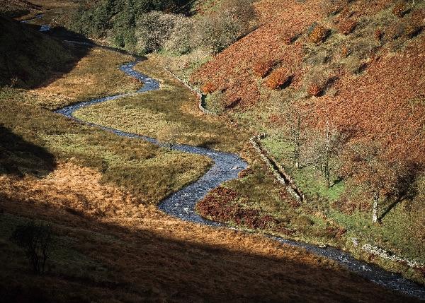 Exmoor River Barle