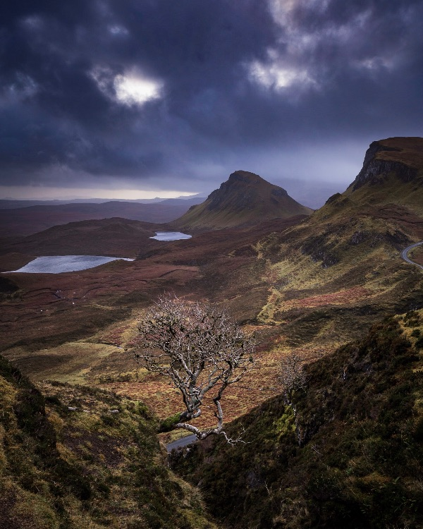 Joe's tree, Trotternish