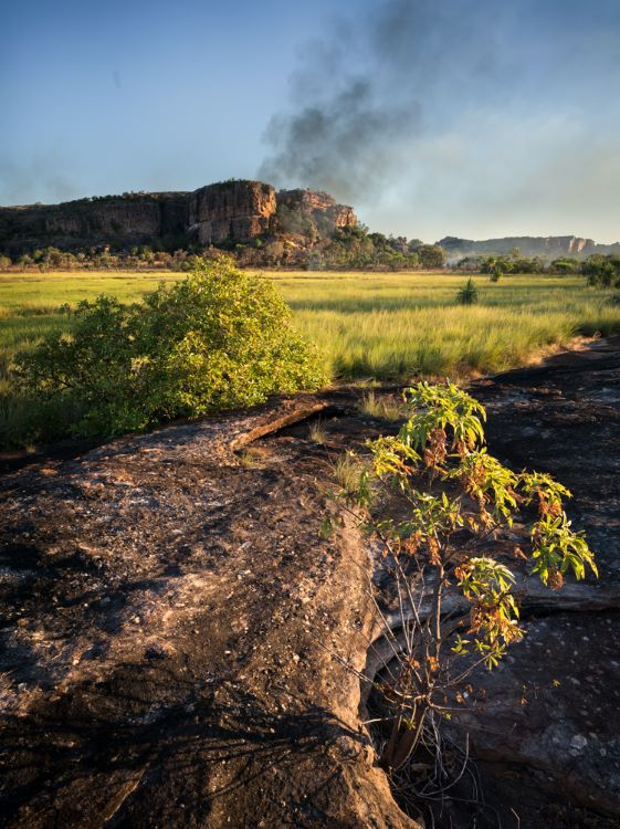 Bushfire, Kakadu, Northern Territory, Australia