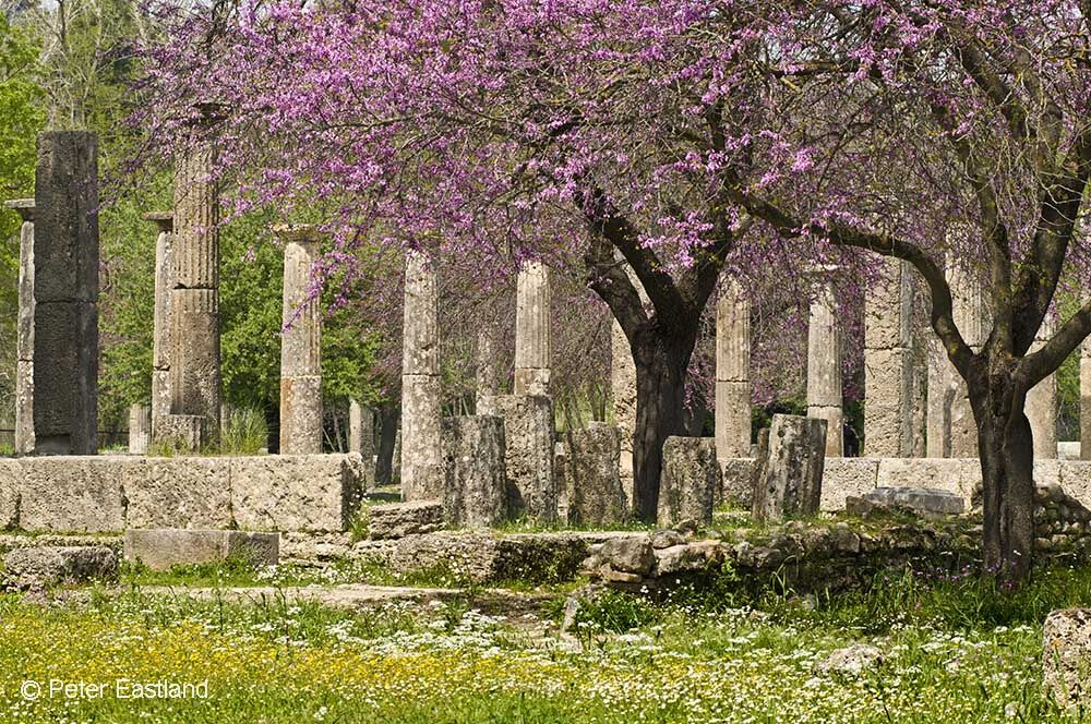 Springtime, looking towards the palaestra, at ancient Olympia, Peloponnese, Greece.<br><br><br><br><br><br>