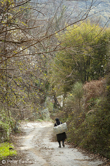 A country lane in the Outer Mani near Kastania in the foothills of the Taygetos Mountains.<BR><BR><BR><br><br><br><br>
