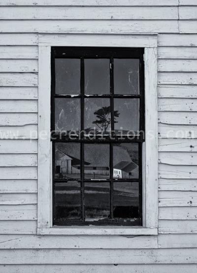 pierce ranch reflections