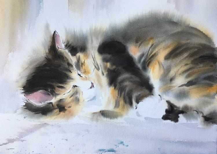 Konstantin's Cat