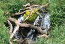 Torduff Waterfall