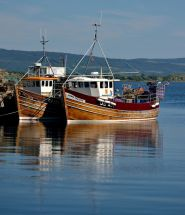 Boats at Tobermory Pier