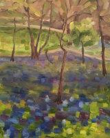 Bluebells at Painshill Park •