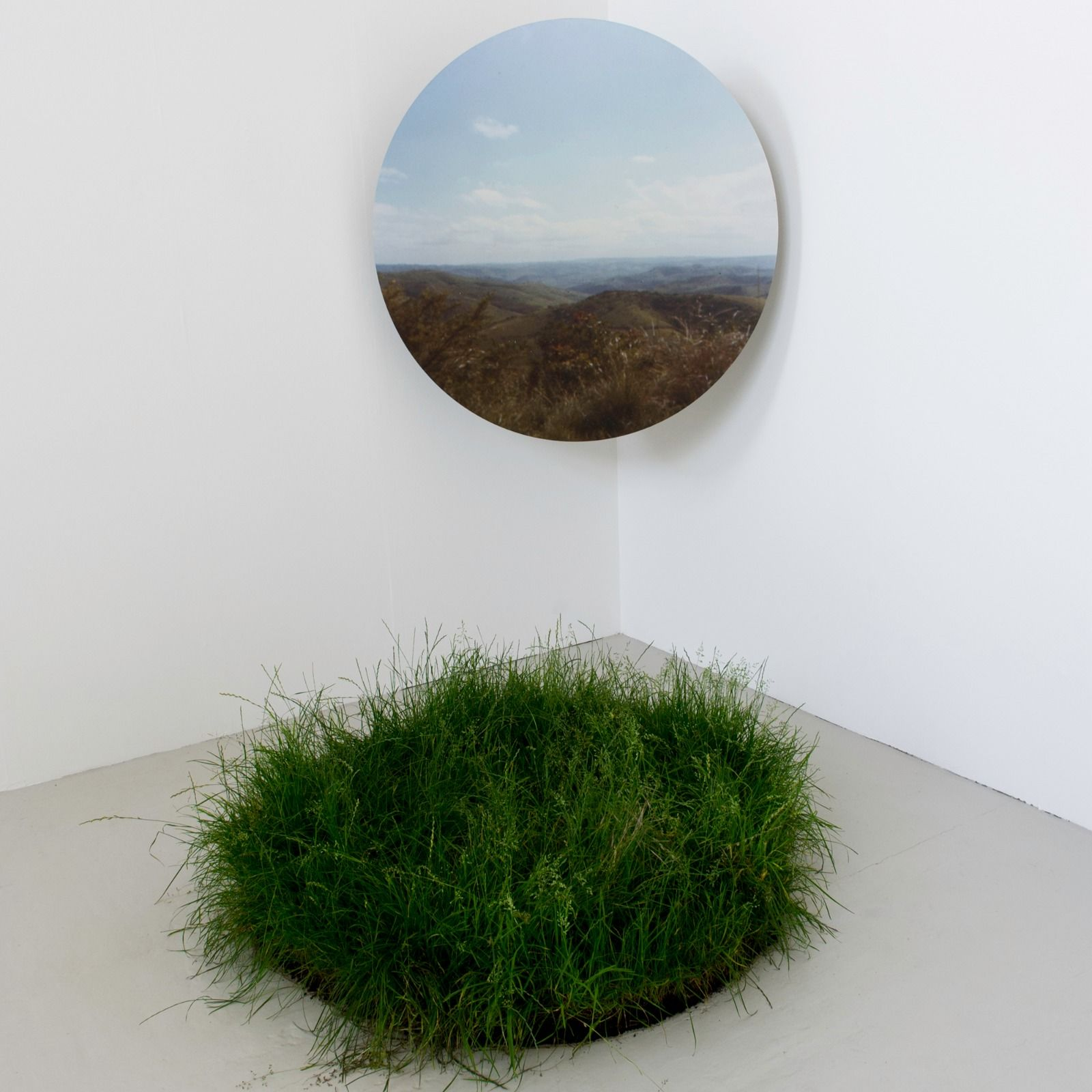 Untitled (Bifurcation) 2012 Digital Print on aluminium composite with grass (1)