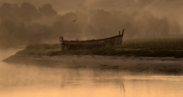 Wreck on the River Taw