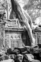 Memory of the Khmers