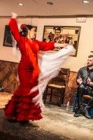 The Flamenco Dancer, Malaga