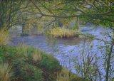 The River at Freshford