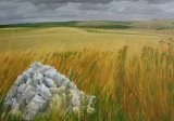 """Flint pile on Cotley Hill, Wiltshire. Oil on canvas. 28""""x20""""."""