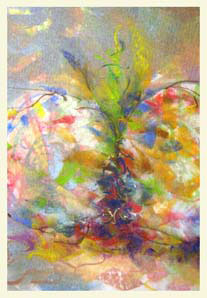 NURSE LOG 4 double-layered drawing - pastel+graphite on tissue papper over card