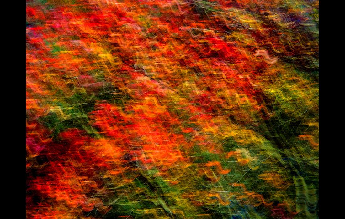 Autumn impression 2 (right image)