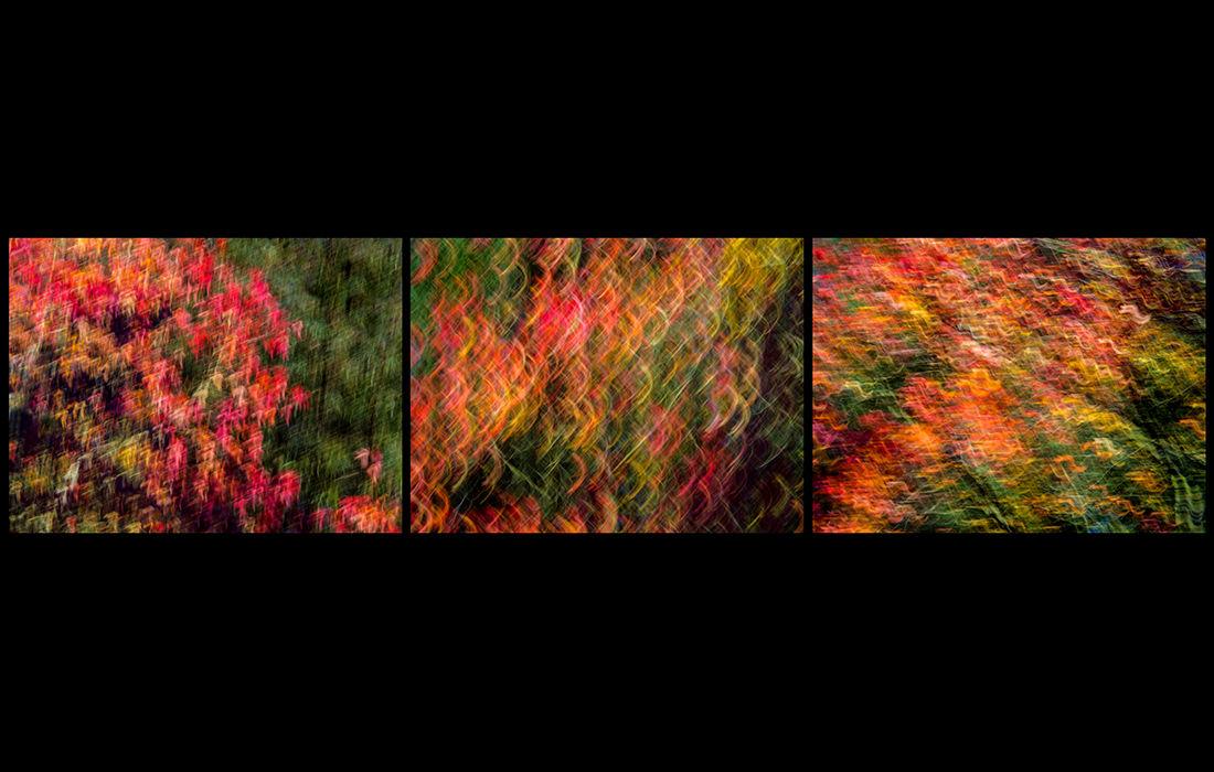 Autumn impressions 2