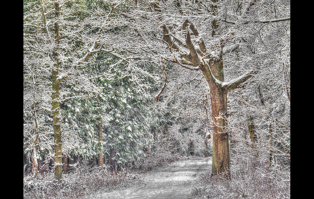 Chilly path