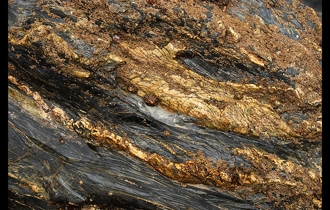Cliff face, Cornwall 2009