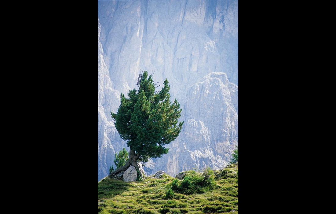 Dolomites 5