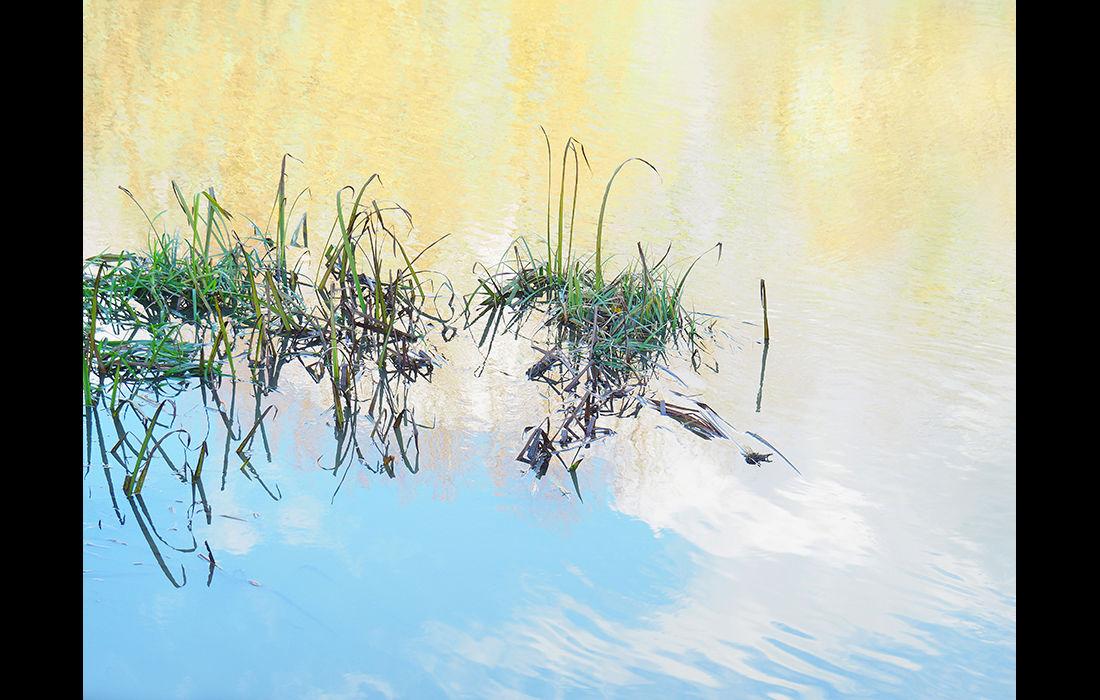 Flooded grass, Culham