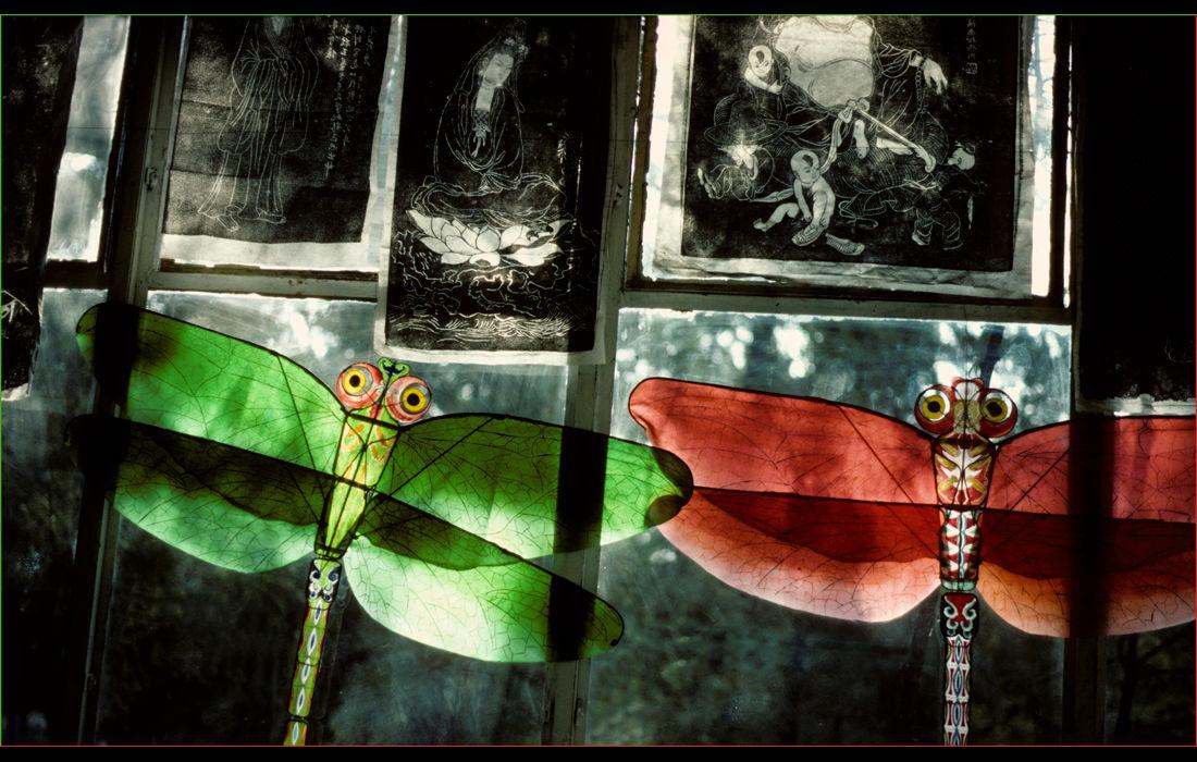 Kites in a shop window, Peking 1982