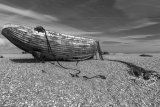 Dungeness 06