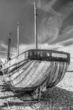 Dungeness 13
