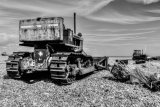 Dungeness 14