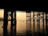 Under the pier.