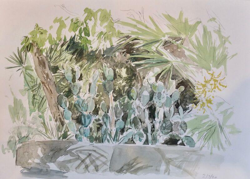 Cactus, Miami Beach Botanical garden