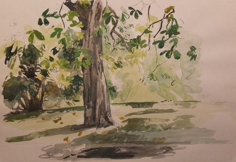 Chesnut tree, Hyde Park