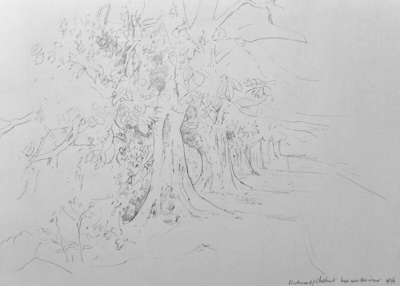 Chesnut trees near the river, Richmond