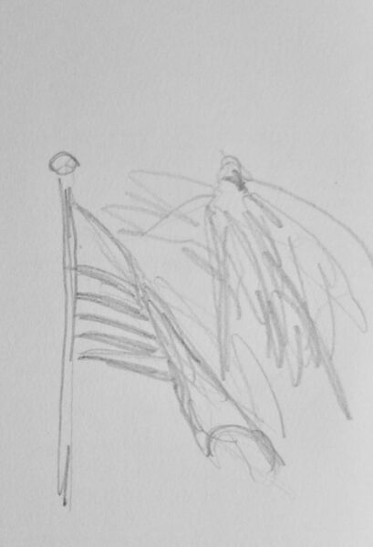 Flag and palm 1
