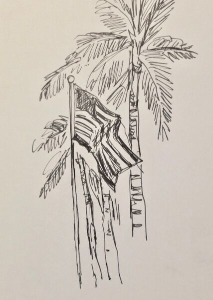 Flag and palm 2