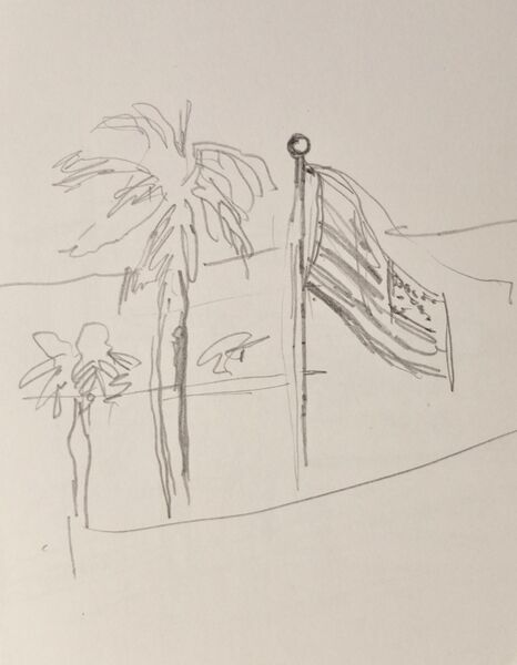 Flag and palm 3