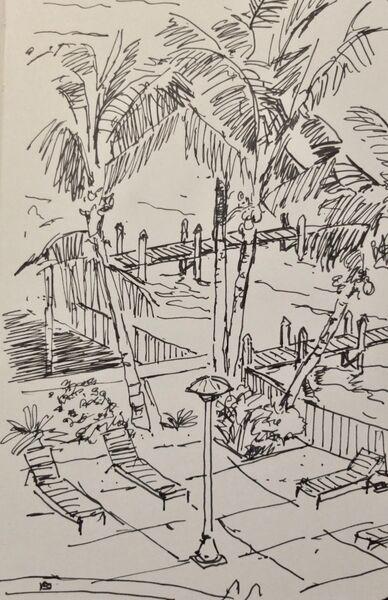 Palms and sunbeds 2