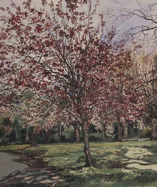 Priory Park 1