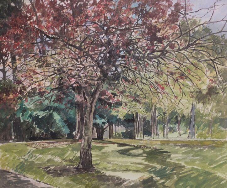 Priory Park 2