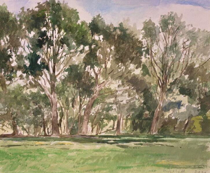 Trees, Alexandra Park 2