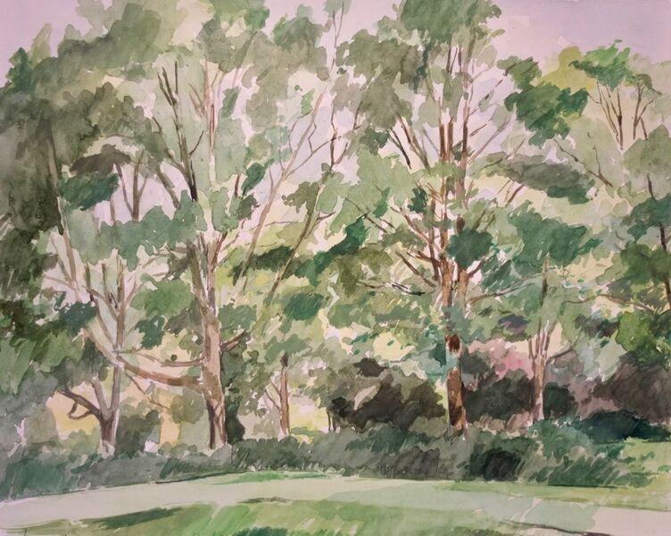 Trees, Waterlow Park