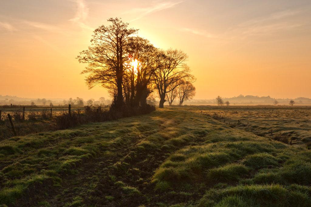 Sunrise on the Somerset Levels