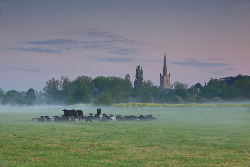 Meadow Ladies in the misty fields by Lechlade