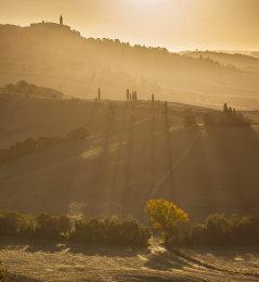Val D'Orcia at sunrise