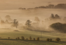 West Wick Farm in mist