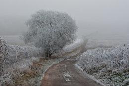 Winter Track